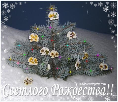 Светлого Рождества!!
